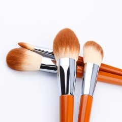 10 Pcs Premium Synthetic Makeup Brush Set, Wooden Handle in Fashional Color with Great Touch